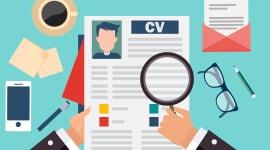 CV Yazma ve Mülakat Teknikleri Eğitimi