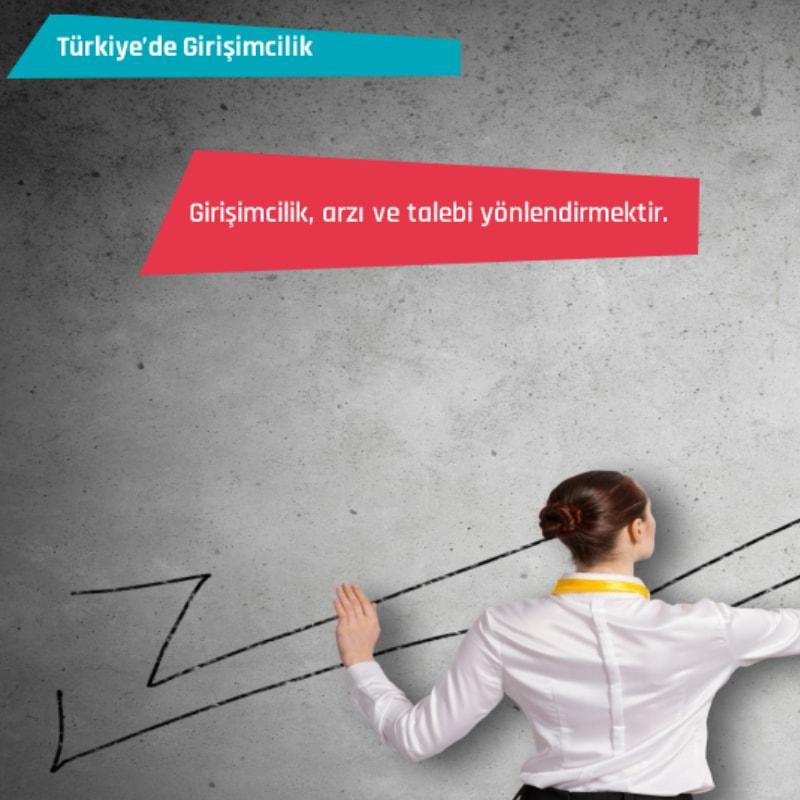 Türkiye'de Girişimcilik Eğitimi