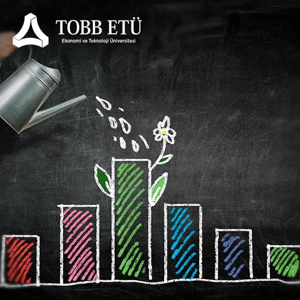 Yatırım Kriterleri ve Sermaye Bütçelemesi Eğitimi
